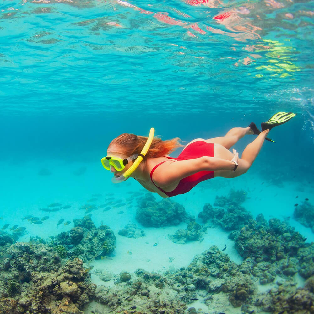 Snorkeling Travel Alerts Safety Guidelines - Egypt Tours Portal